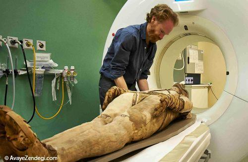نمایشگاهی از مومیاییهای مصری