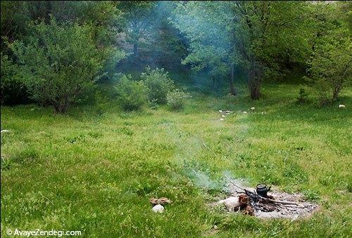 طبیعت بهاری روستای آب ملخ