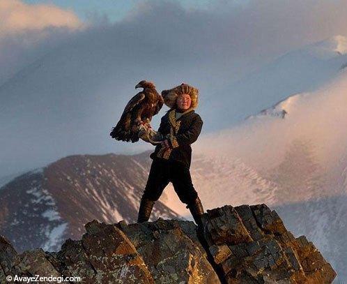 رام کردن عقاب در مغولستان