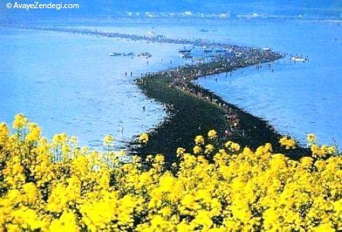 عکس های جالب از شکافته شدن دریاچه