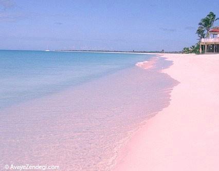 زیباترین سواحل صورتی در جهان